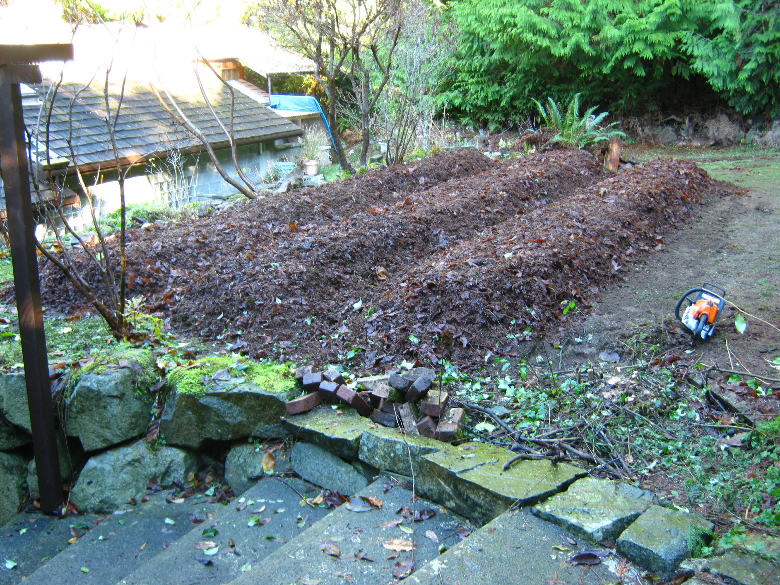 permaculture vegetable garden mulch